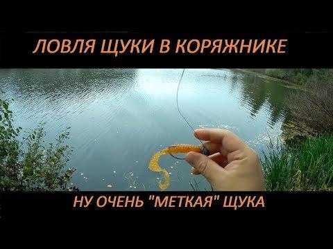 видео рыбалка на щуку в сентябре