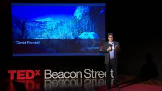 Want to get ahead? Go to Sleep: David Randall at TEDxBeaconStreet