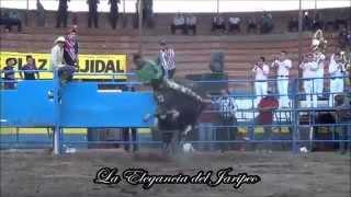 LEY EJECUTORA | Rancho El Cerrito Los Toros Ejecutores en Tepec Jalisco