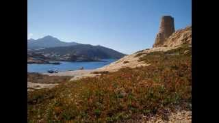 Calvi ; Haute-Corse
