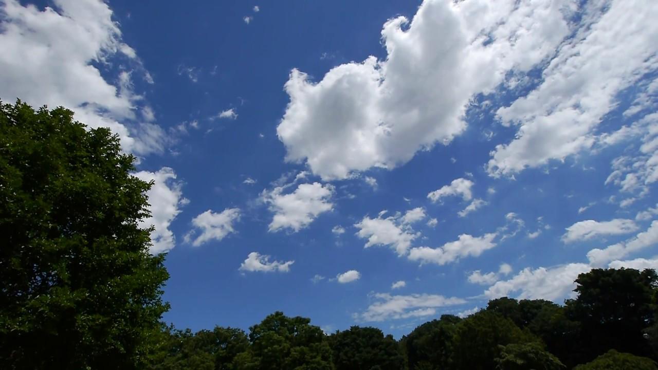 商用利用可能 癒しの自然動画フリー素材no 008夏の青空と雲の風景