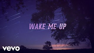 billy currington wake me up lyric video
