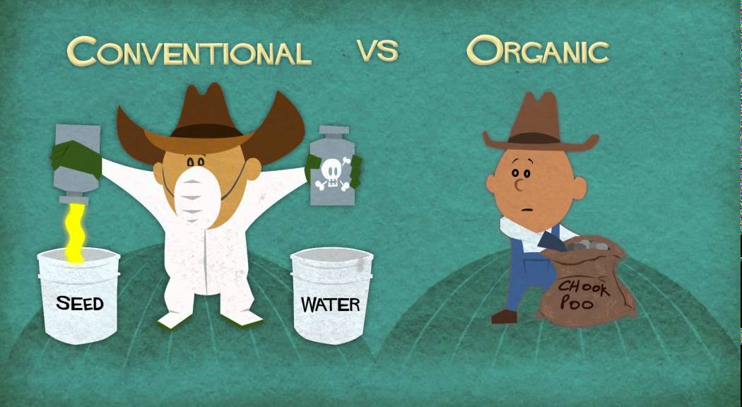 What is Organic - YouTube