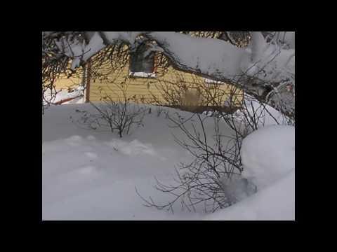 Vinter i Vänersborg