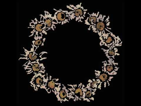 """A ring of daisies, pictured on the album cover of """"Compendium"""" by In Gowan Ring"""
