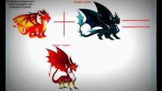 Como fazer os dragãoes Neon , Futebol , Fogo Frio , Gomoso , Zumbi , Pinguim e Vampiro