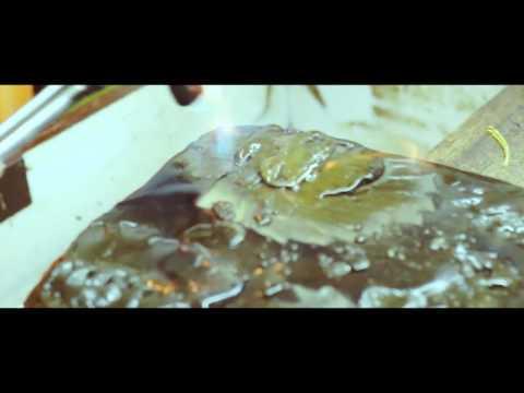 The Art of Goldsmithing