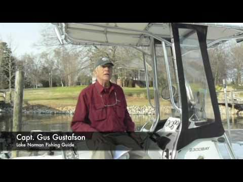 Capt. Gus in a Home Helpers - Direct Link Video