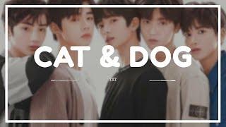TXT - 'CAT & DOG' Easy Lyrics (SUB INDO)