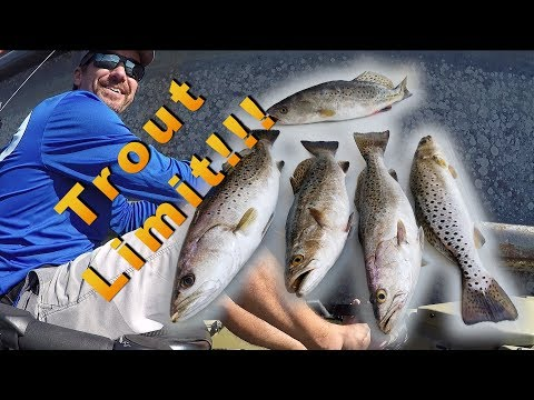 Trout Fishing Rudee Inlet (And A New Spot)