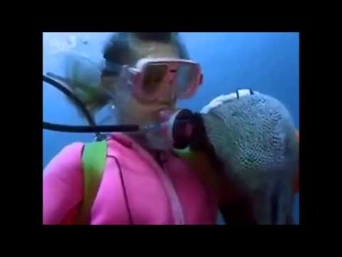 Woman Makes Best Friends with Moray Eel (Moray Crazy Magic)