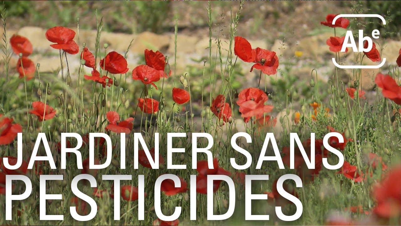 Jardiner sans pesticides. ABE-RTS
