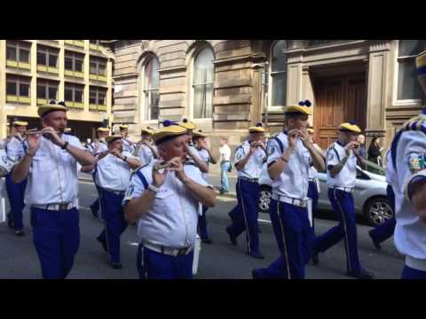 36th Ulster Division Memorial Association Parade 6/8/16 vid 3