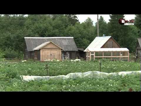 Дешевые дома в Новгородской области: Батецкий район