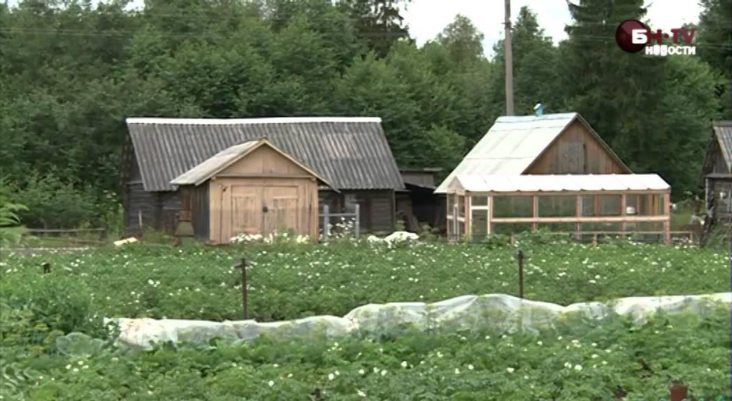 Купить дом в псковской новгородской области
