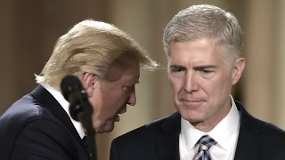 US   Who is Judge Neil Gorsuch, President Donald Trump's pick for the Supreme Court?