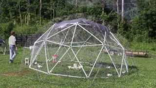 Building A Geodesic Chicken Coop For Pastured Poultry