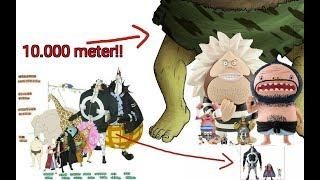 MENGEJUTKAN!! ukuran makhluk hidup di dunia One Piece dari yg terkecil sampai yg terbesar