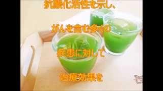 エピガロカテキン スーパー緑茶 カテキン 【関連動画】 騙されるな!高...