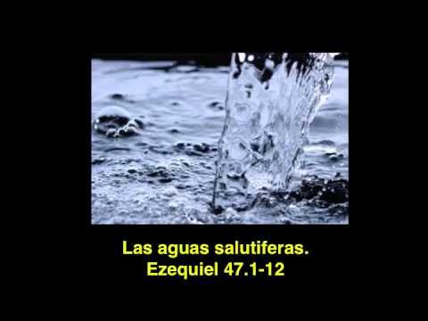 Las aguas salutíferas: Ezequiel 47.1-12