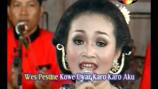 Download Video Cengkir Wungu, voc. Tika, campursari sangkuriang MP3 3GP MP4