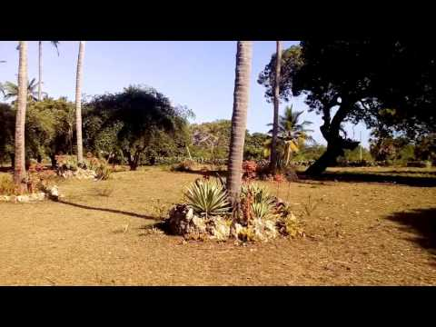 Video of Diani property for sale near Kongo River
