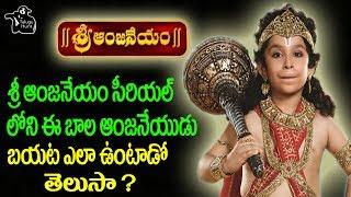 Sri Anjaneyam Serial Fame Bhanushali Ishant Pics | Celebs Pics | WTelugu Hunt