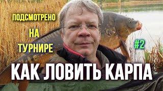 Как ловить карпа Интрига среди крутых рыб и снастей чемпионов