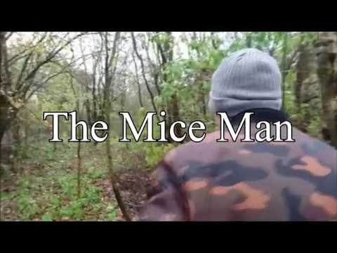 The Mice Men