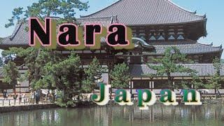 Wisata Jepang: Nara Tempat Lahir Sejarah Penting dari Peradaban Jepang, Nara 28