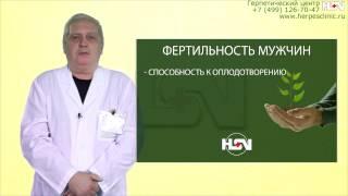 Мужское бесплодие и вирус герпеса