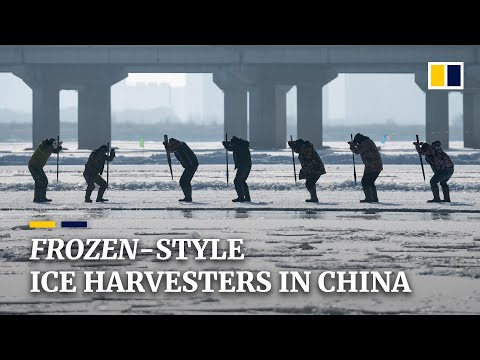 'Frozen'-like Chinese icemen brave the cold for Harbin festival