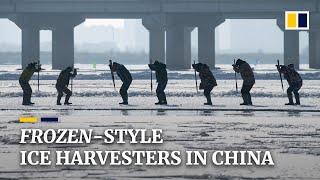 'Frozen'-like Chinese icemen brave the cold for Harbin festival