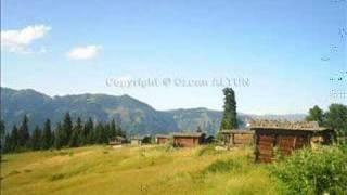 ARTViN ŞAVŞAT - Tepebaşı Köyü
