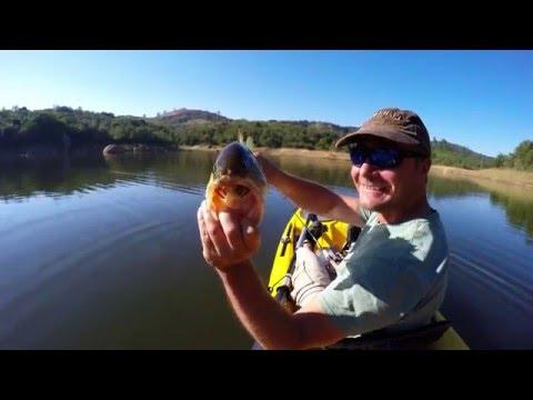 Bass Fishing In South Africa - Da Gama Dam, Mpumalanga