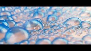 Pollogen - OxyGeneo Technology