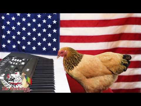 Star Spangled Banner by Jokgu of the Flockstars
