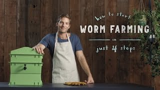 How to start a worm farm in 4 steps: vermiculture made easy