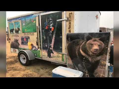Bear sightings spark concerns near Rice Ridge fire