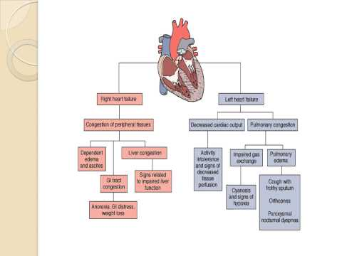 Pediatric Cardiac  Lecture
