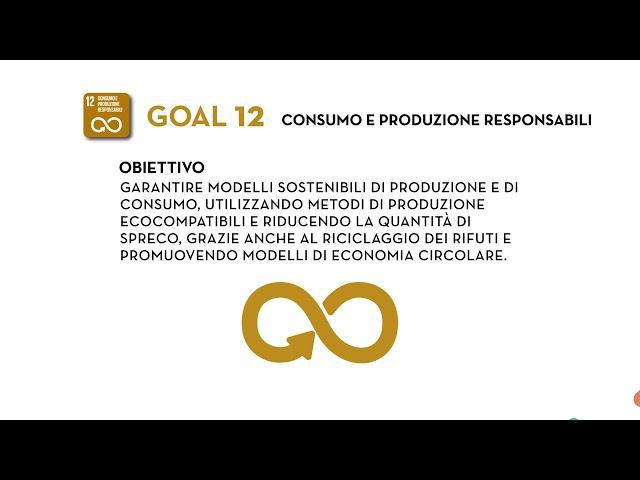 SDG Goal 12: Consumo e produzione responsabili