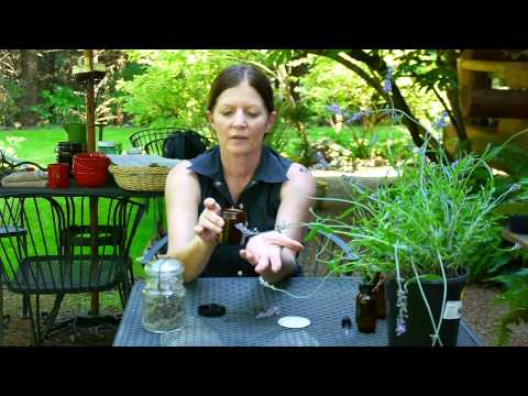 harvesting-&-using-edibles-from-your-garden-:-how-to-extract-lavender-from-a-plant