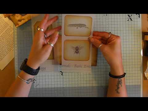 Quick Create: Window Index Cards Pockets and Envelopes