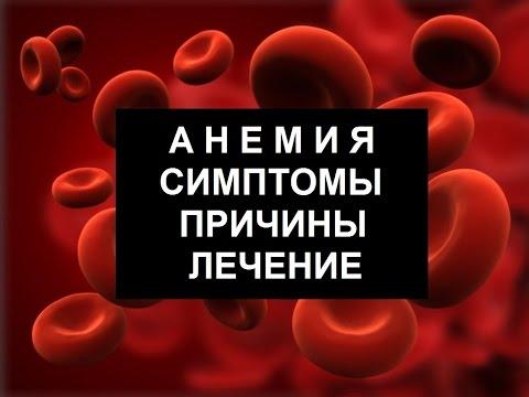 Анемия – причины и виды анемии