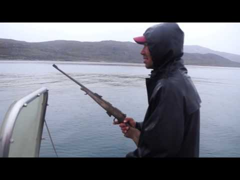 Hunting Seals In Greenland With Knud The Inuit
