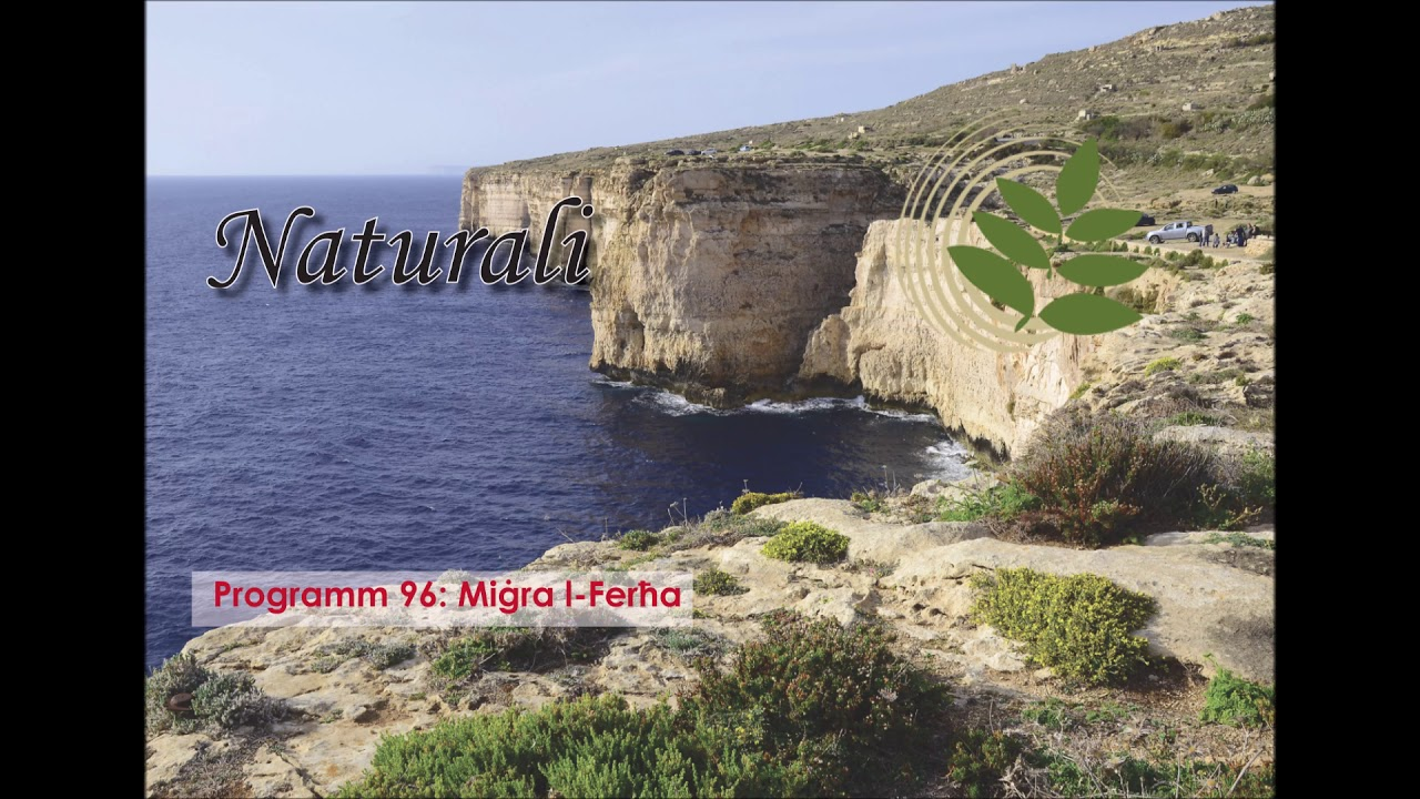 Programm 96  Miġra l Ferħa