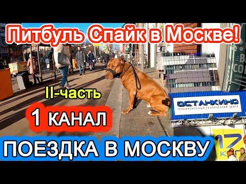 ПОЕЗДКА В МОСКВУ НА 1 КАНАЛ. 2 ЧАСТЬ !!! ПЕРЕДАЧА ВИДЕЛИ ВИДЕО.