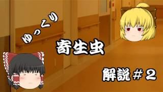 【ゆっくり解説】ゆっくり寄生虫解説#2~サナダムシ~