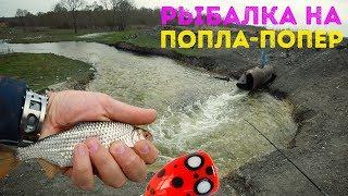 Набомбил плотву и красноперку! Рыбалка на поппла-попер | Ловля на сперм - Рыбалка на водосбросе