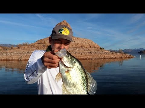 jigging-for-giant-crappie-and-bass